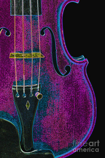 Photograph - Violin Viola Body Photograph In Digital Color 3265.03 by M K Miller