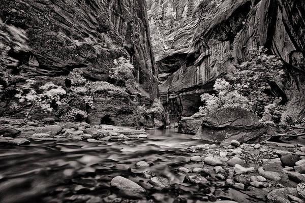 Wall Art - Photograph - Virgin River Calm by Juan Carlos Diaz Parra