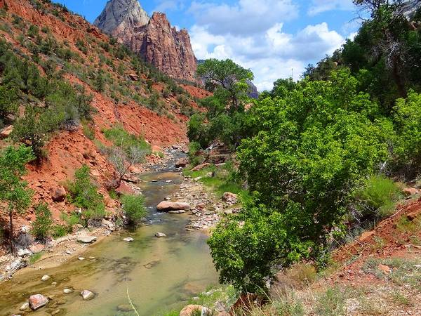 Photograph - Virgin River Zion National Park by Keith Stokes
