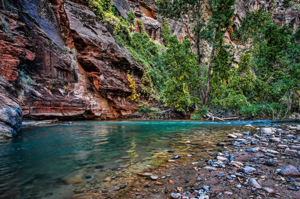 George Canyon Photograph - Virgin River Zion National Park Utah by George Buxbaum