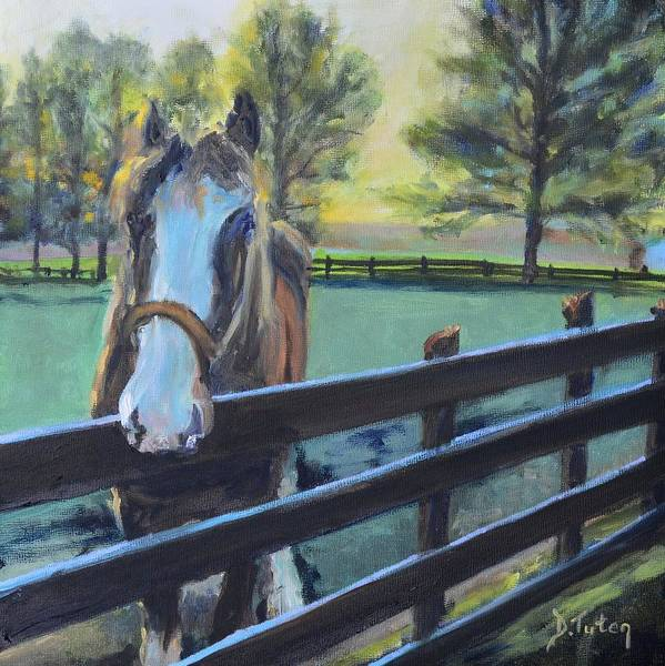 Painting - Virginia Horse Farm Morning by Donna Tuten