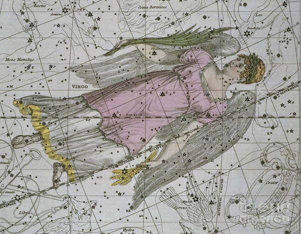 Territory Painting - Virgo From A Celestial Atlas by A Jamieson