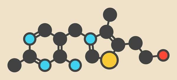 Vitamin Photograph - Vitamin B1 Molecule by Molekuul