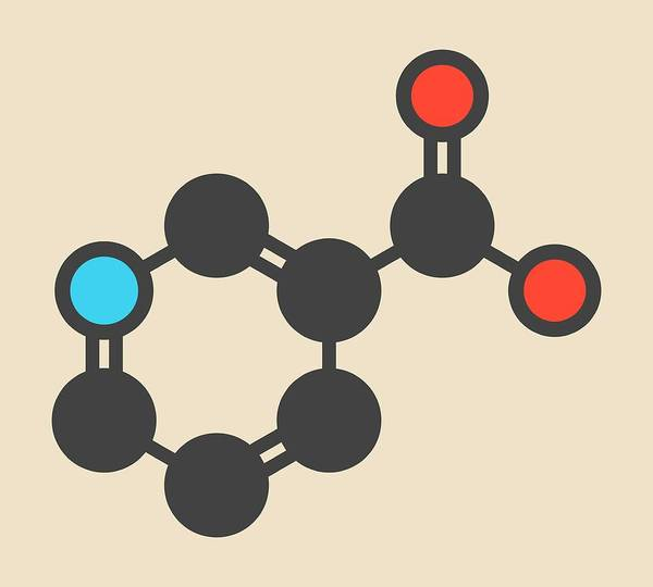 Vitamin Photograph - Vitamin B3 Molecule by Molekuul