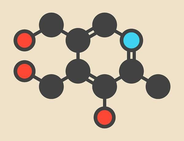 Vitamin Photograph - Vitamin B6 Molecule by Molekuul