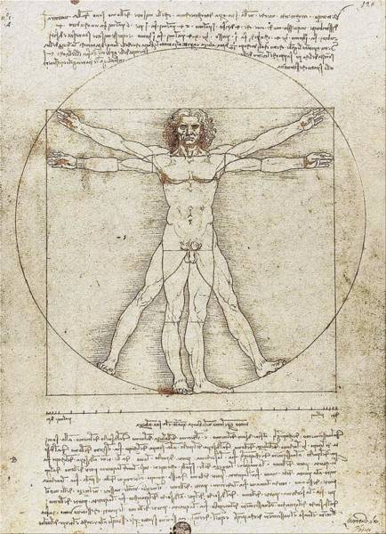 Digital Art - Vitruvian Man By Leonardo Da Vinci by Serge Averbukh