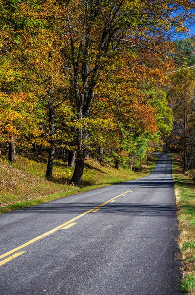 Wall Art - Photograph - Vivid Autumn Colors Along A Scenic Highway by Lori Coleman