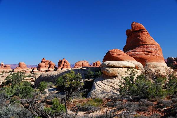 Photograph - Vivid Orange And Blue Of The Utah Desert by Cascade Colors