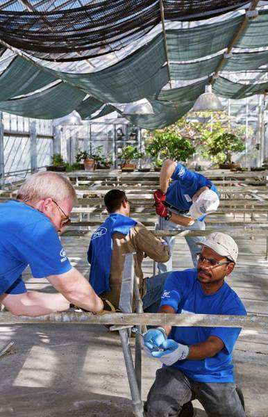 Non Profit Photograph - Volunteers At A Botanic Garden by Jim West
