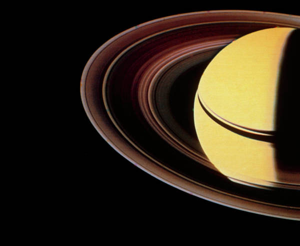 Voyager Photograph - Voyager 2 Photo Showing Saturn & Its Ring System by Nasa/science Photo Library