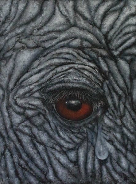 Painting - Vulnerable Comes Before Endangered by Nancy Lauby