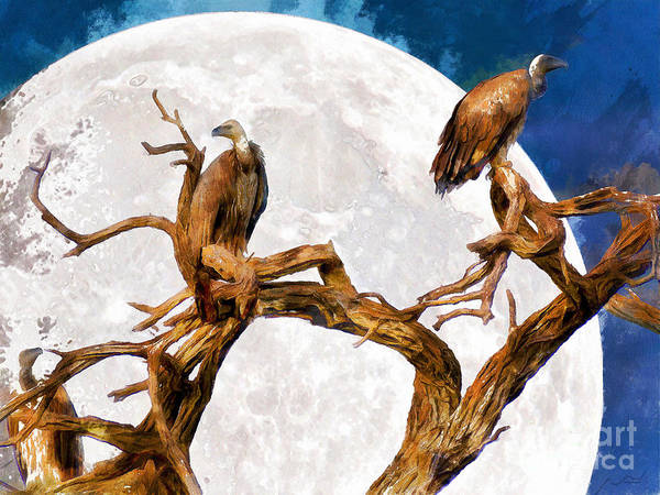 Photograph - Vultures Of The Full Moon Night 20150212wcstyle by Wingsdomain Art and Photography