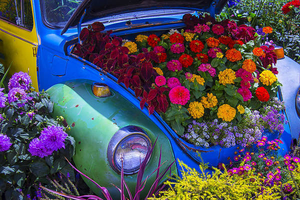 Wall Art - Photograph - Vw Bug Garden by Garry Gay