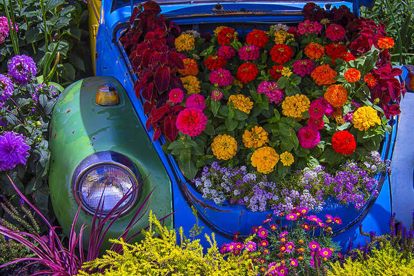 Wall Art - Photograph - Vw Bug In The Flower Bed by Garry Gay