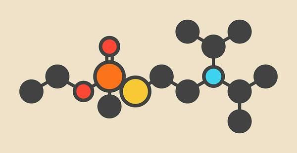 Nerves Photograph - Vx Nerve Agent Molecule by Molekuul