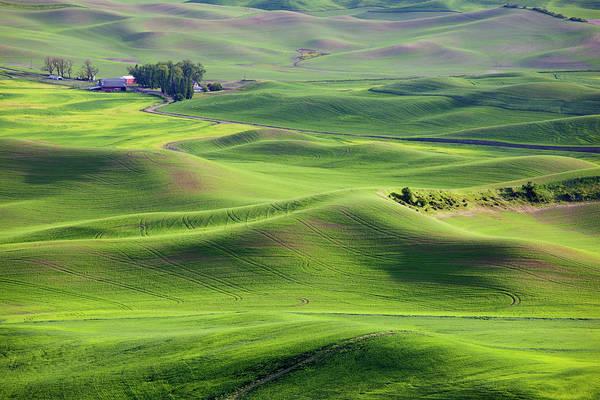 Wall Art - Photograph - Wa, Whitman County, View Of Farmland by Jamie and Judy Wild
