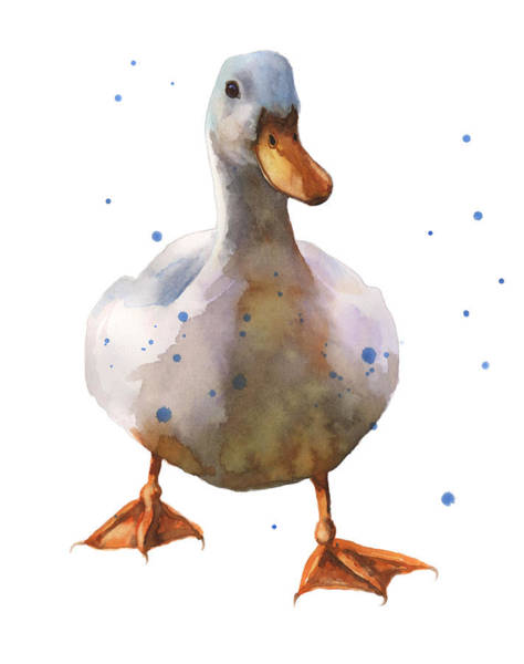 Barnyard Animal Painting - Waddling White Duck by Alison Fennell