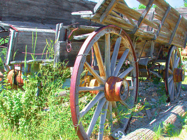 Photograph - Wagon by David Armstrong