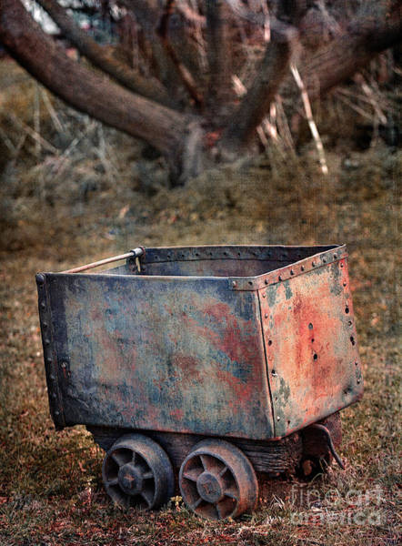Photograph - Wagon by Russell Brown