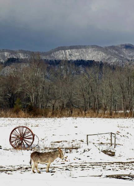 Photograph - Wagon Wheel by Jennifer Robin