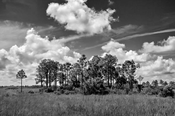 Photograph - Wagon Wheel Road 1 Bw by Rudy Umans