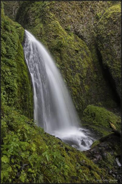 Photograph - Wahkeena Falls by Erika Fawcett