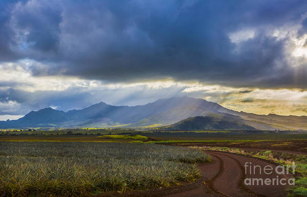 Pineapple Photograph - Waianae Mountains Of Oahu Hawaii by Diane Diederich