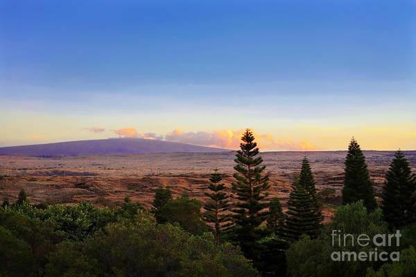 Photograph - Waikoloa by Ellen Cotton