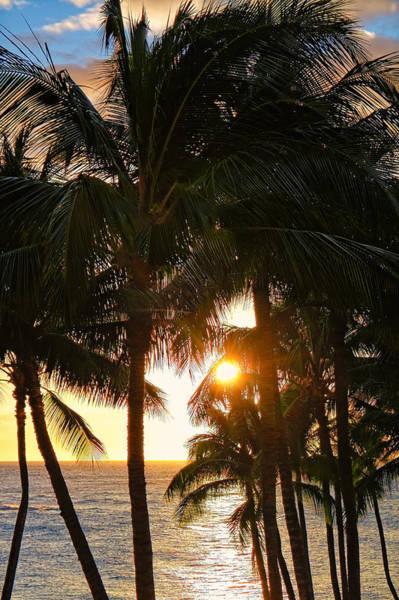 Waikoloa Palms Art Print