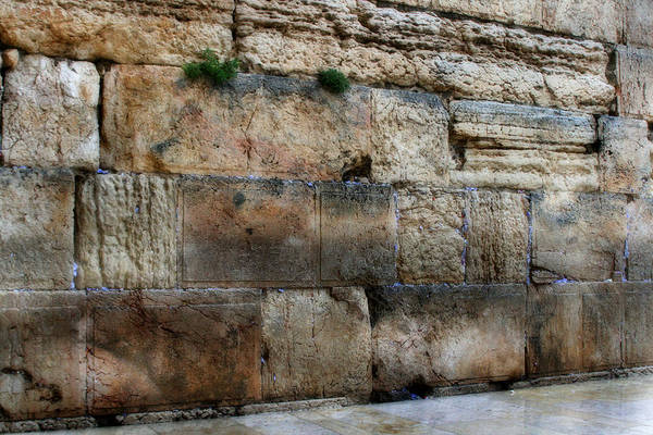 Photograph - Lonely Empty Wall  by Doc Braham
