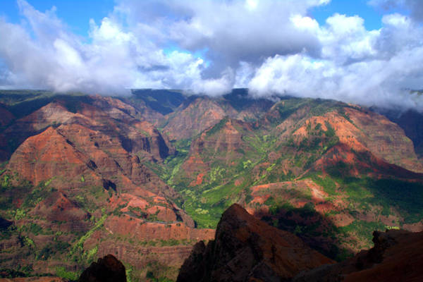 Waimea Canyon Photograph - Waimea Canyon by Brian Harig