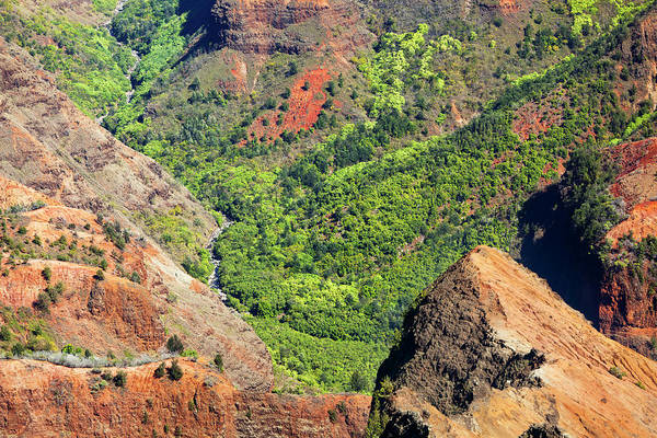 Waimea Canyon Photograph - Waimea Canyon Sidearm, Kauai by Michaelutech