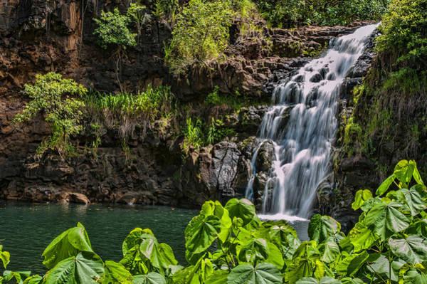 Photograph - Waimea Falls by Dan McManus