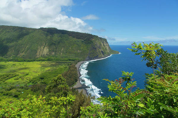 Object Photograph - Waipio Valley, Hamakua Coast, Big by Danita Delimont