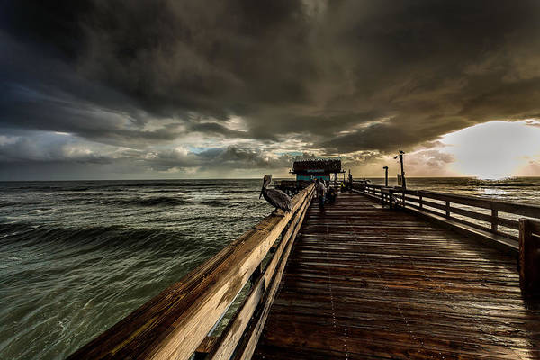 Stormcloud Photograph - Waiting For Breakfast by Steven Reed