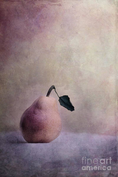 Wall Art - Photograph - Waiting For Company by Priska Wettstein