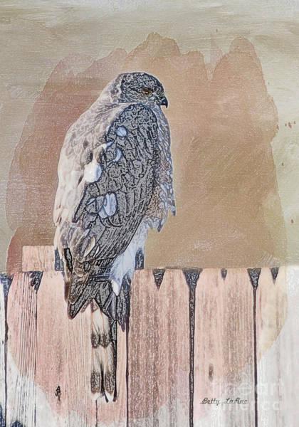 Sharpie Wall Art - Photograph - Waiting For Mr. Goodbird by Betty LaRue