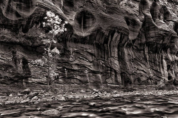 Wall Art - Photograph - Waiting For The Next Flash Flood by Juan Carlos Diaz Parra