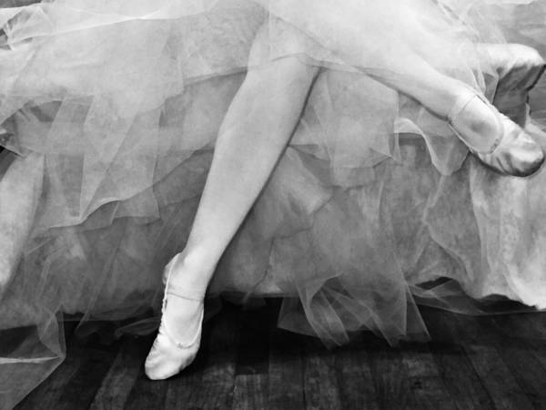 Photograph - Waiting In The Wings Bw by Angelina Tamez