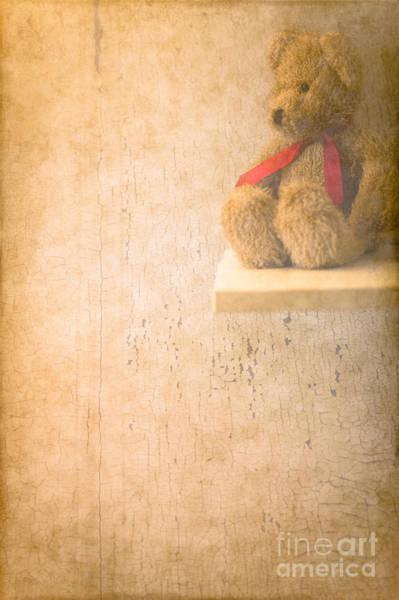 Teddy Photograph - Waiting  by Jan Bickerton