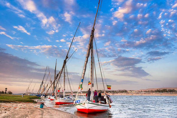 Photograph - Waiting On The Banks Of The Nile In Egypt by Mark Tisdale