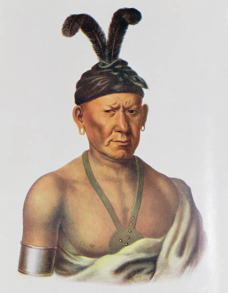 Headdress Photograph - Wakechai Or Crouching Eagle, A Sauk Chief, Illustration From The Indian Tribes Of North America by Charles Bird King