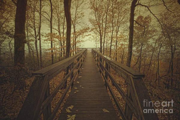 Walk Into The Mist Art Print