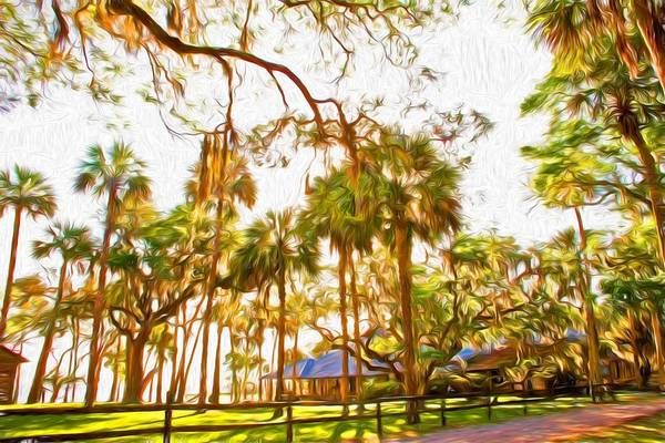 Photograph - Walk To Princess Place by Alice Gipson