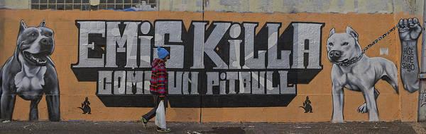 Photograph - Walker Between Pit Bulls by Roberto Pagani