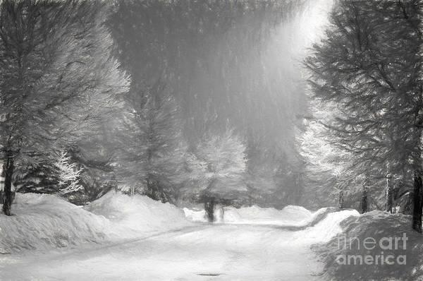 Photograph - Winter Walk by Les Palenik