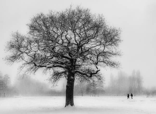 Walkers Photograph - Walking In A Winter Wonderland by Ian Hufton