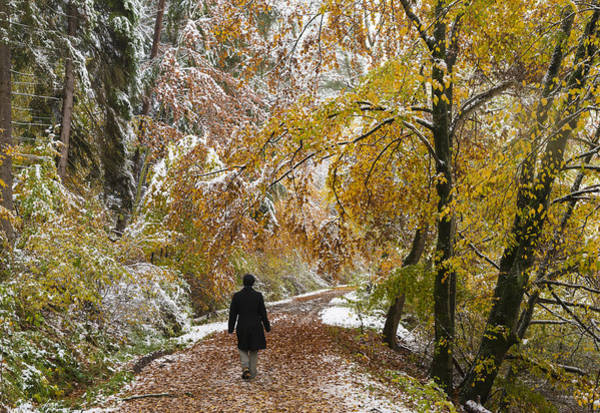Juxtaposition Photograph - Walking Into Winter - Beautiful Autumnal Trees And The First Snow Of The Year by Matthias Hauser