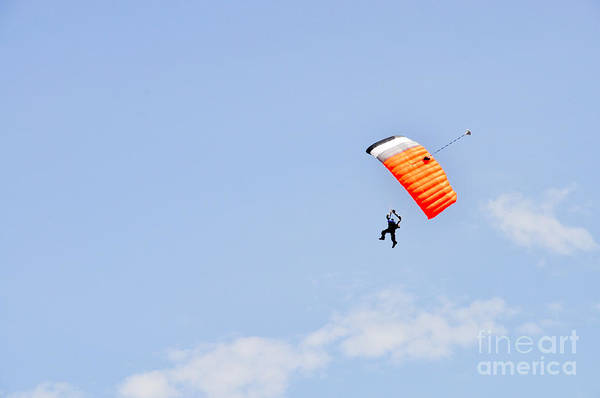 Photograph - Walking On Air by Cheryl McClure