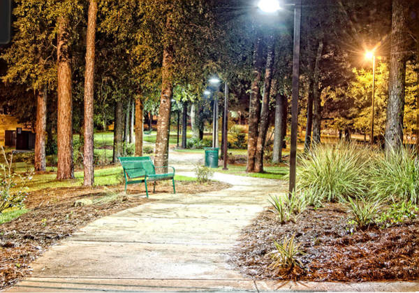 University Of West Florida Photograph - Walking Path by Jon Cody